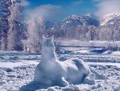 Snow_horse