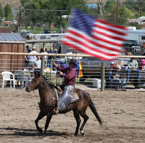 Horse-flag